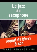 Apport du blues & son