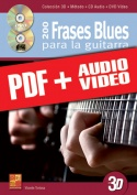 200 frases blues para la guitarra en 3D (pdf + mp3 + vídeos)